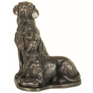 Pair or Labradors